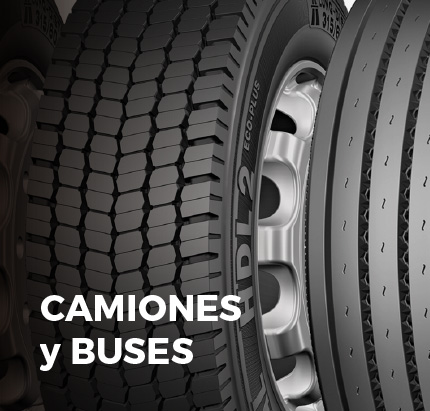 camiones-buses